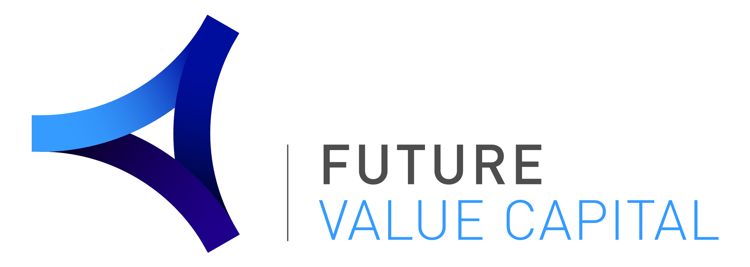 Logo Future Value Capital horizontal